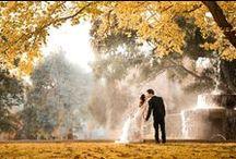 Wedding Photography / Ideas for wedding photography