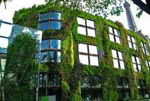 Vertical Gardens for Organic Futures