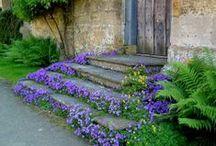 Ihan Pihalla / puutarha, viljely, koristeet, vinkit