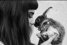 Rabbit <3