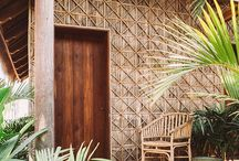 Tropical Eco. / Architecture of tropical eco.