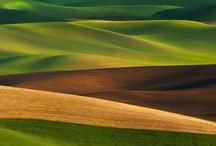 Photography : landscape
