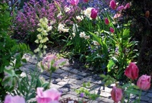 Garden vision / by Vision Boards