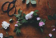 Växtlighet. / Vackra buketter och arrangemang.