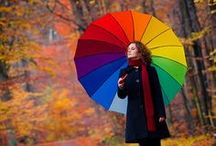Parasols and umbrellas / Come rain or shine........