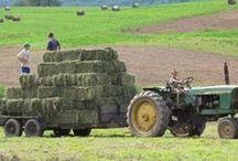 ♡ Boerenleven...