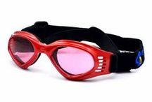Pet Goggles