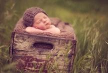 Photog Inspiration : Newborns / Babies / by Patricia Sampson