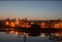 ⋆ SANTA CRUZ ⋆ California / Santa Cruz, California. Située dans la baie de Monterey, au Sud de San Francisco.
