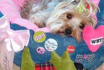 La Sweetie Dog Team / Les mannequins chiens de sweetiedog vous présente les articles de la boutique en ligne de vêtements et d'accessoires pour chiens disponible sur www.sweetiedog.com