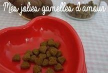 Friandise & Biscuit pour animaux Sweetie Dog www.sweetiedog.com / Réaliser de délicieuses friandises pour vos animaux !