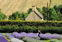 Rural France,  life in the towns/ villages and on the farm / by Brian Courtney