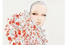 - Illustrator:Nuno Da Costa