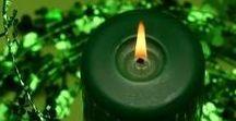 в зелёном - green