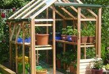 tuinieren in een kas