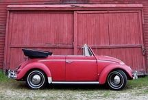 "vw bugs / all about my love for the ""BUG"""