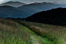 Wanderlust / by Jennifer Brown