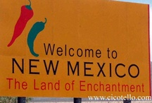 Land of Enchantment / Historical, Cultural New Mexico USA - 47th State- January 6, 1912  / by Sandi Noë