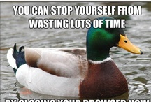 "Actual Advice Mallard meme / ""A word to the wise ain't necessary - it's the stupid ones that need the advice. ~Bill Cosby :D"