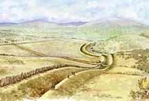 Irish Iron Age