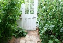 garden two / gar'den n. - piece of ground devoted to growing flowers, fruit or vegetables