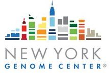 DNA Land / DNA Land is non-profit and run by academics affiliated with Columbia University and the NY Genome Center