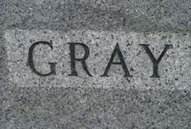 Color:  Gray / by Joan Nicholes