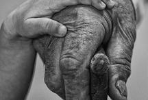 Hands / by Monica Howkins