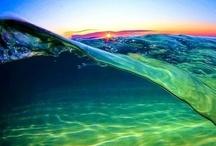 Water!!! / by Monica Howkins