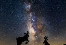 Night Skies / by Monica Howkins