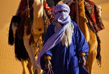 Middle Eastern World / by Monica Howkins