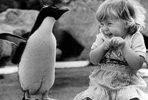 Pure Innocence