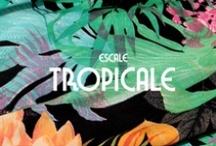 ESCALE TROPICALE / Plongeon vert au cœur d'un jardin luxuriant. Aller simple pour un voyage ambiance cocotiers et sable chaud. Les désirs d'évasion s'expriment par le motif tropical. Vivement l'été !