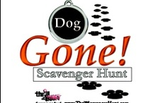 Dog Gone! Scavenger Hunt / The Dog Gone! Scavenger Hunt allows you & your dog to participate together in a fun & interactive scavenger hunt.  You figure out the clues to collect all the doggie treats/toys along the way.  Visit our website for a list of events, details & to purchase your tickets! #ThrillofHunt #ScavengerHunt