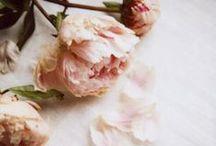 FLORALS / Les imprimés floraux féminisent des matières sporty et des pièces boyish. Version grosses fleurs graphiques ou en all-over inspiration 90's, l'imprimé fleuri se pense moderne et féminise les looks de la saison.