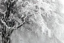 Ice'n snow