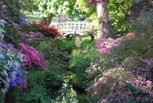 Exbury Gardens New Forest Daisybank Cottage / Exbury Gardens are a spectacular 200 acre (100 hectare) site, world-famous for the Rothschild Collection of rhododendrons, azaleas, camellias and rare trees and shrubs....a short drive from Daisybank