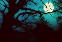 Moonlight / The light from within....