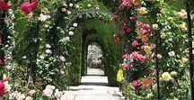 Alhambra / Granada and more.....The poetry of Islamic architecture