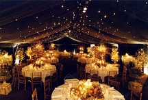 Wedding Ideas / by Katherine Bartos