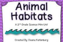 dierenrijk/animal kingdom