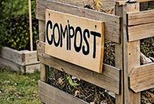 Composting / by SeedsNow.com