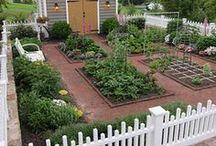 Inspirational Vegetable Gardens