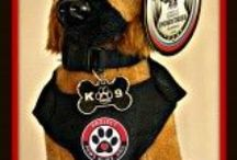 Project Paws Alive / Welcome to Project Paws Alive; a nationwide 501(c) non-profit organization. We rely solely on donations and sponsors to provide lifesaving K-9 equipment such as bullet & stab-proof vests, first aid kits, vehicle heat alarms, cooling vests, and pet oxygen mask kits to Law Enforcement, Fire, Search & Rescue, EMS, and Military nationwide.  / by Project Paws Alive