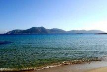 Fanos studios and beach bar / Vacation in Greece!!!koufonisia