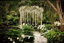 Mariage - Plantes