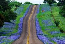 Texas Mystique
