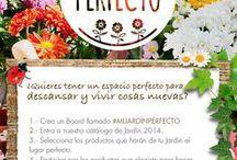 #MIJARDÍNPERFECTO / EASY