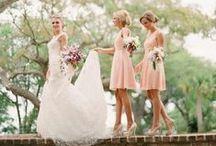 What Will They Wear? / Wedding Attire