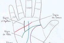 Lignes de mains